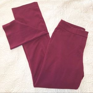 Maurices The Slim Boot Pants - Rich Merlot